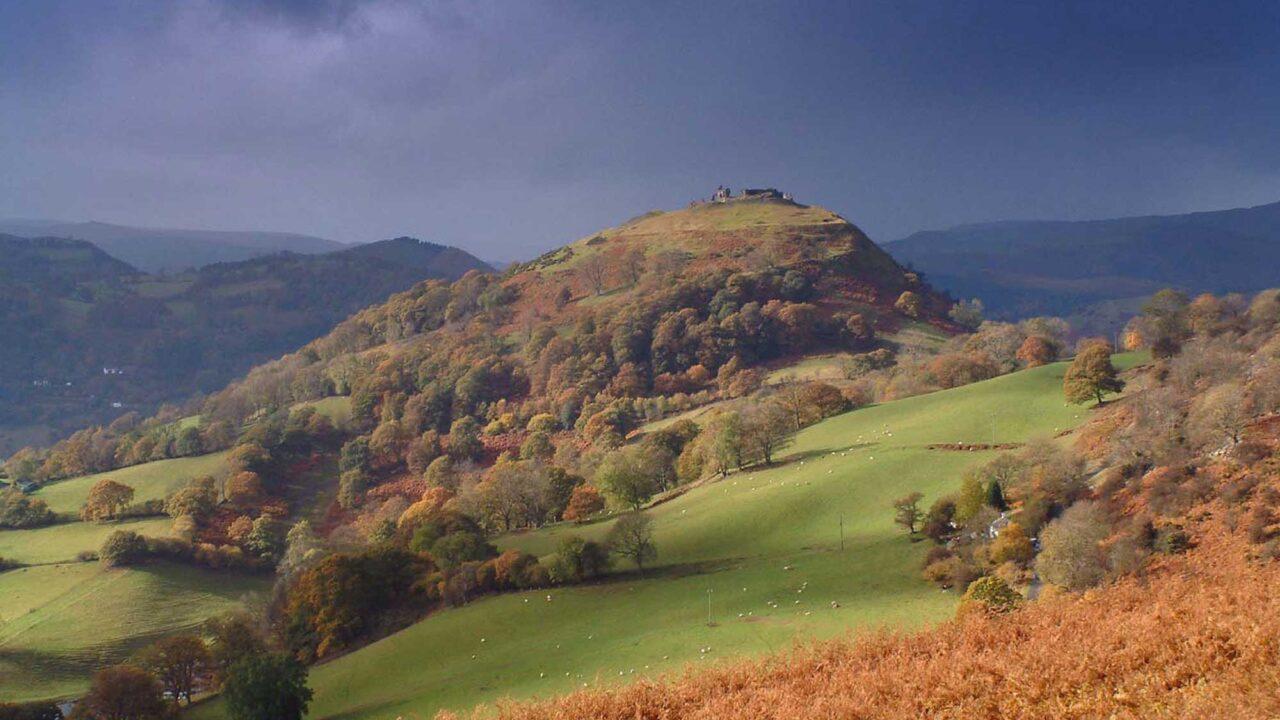 *Panorama of Dinas
