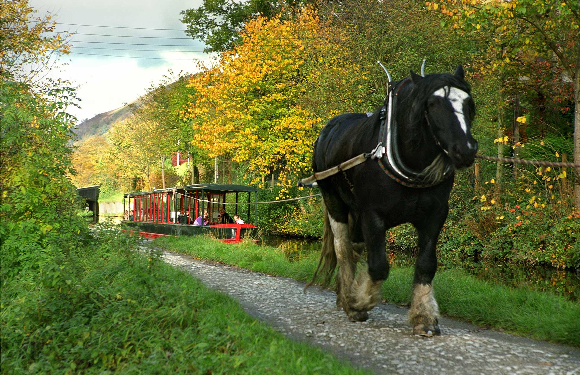 *horse drawn narrowboat llangollen canal