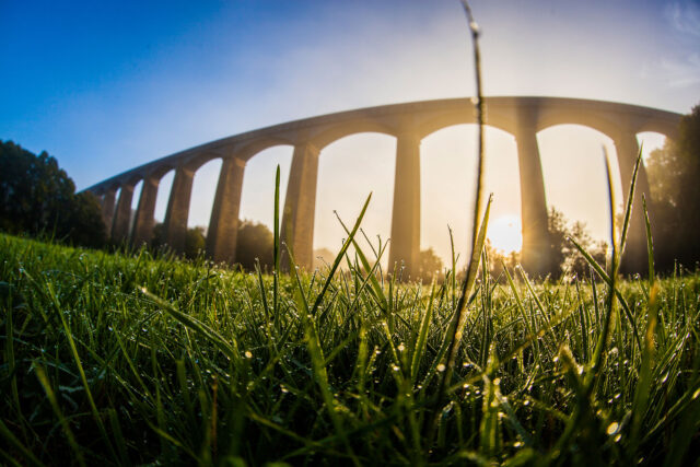 Gwlith yn gynnar yn y bore ar y gwair wrth draphont ddŵr Pontcysyllte / Early morning dew on the grass at the Pontcysyllte aqueduct