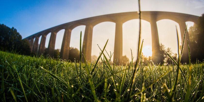 Gwlith yn gynnar yn y bore ar y gwair wrth dyfrbont ddŵr Pontcysyllte / Early morning dew on the grass at the Pontcysyllte aqueduct