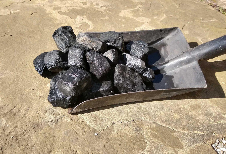 Shovel of coal