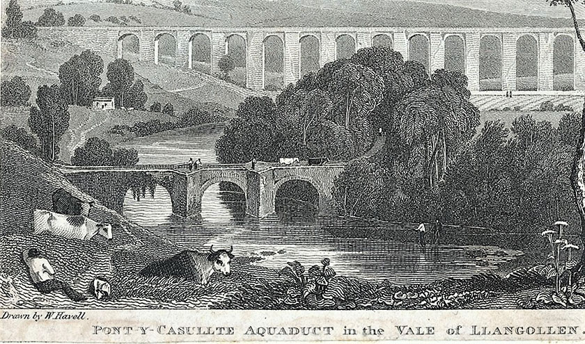 Manylion ysgythriad Havell Detail of Havell engraving